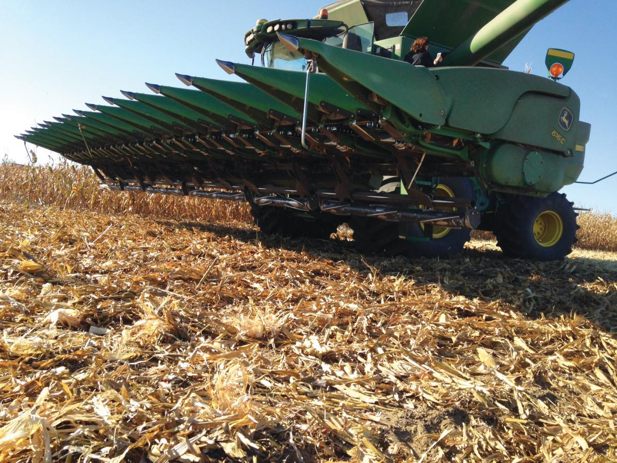 stalk devastator under the corn head