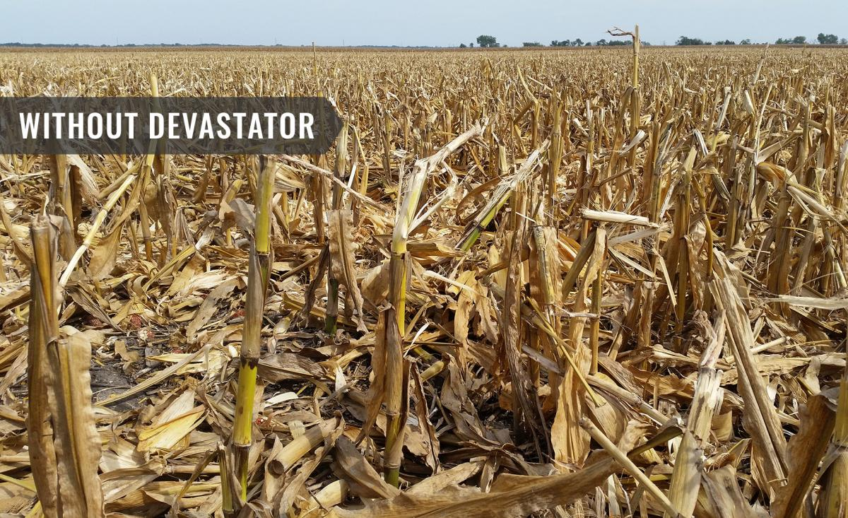 what the field looks like before the devastator has been to work