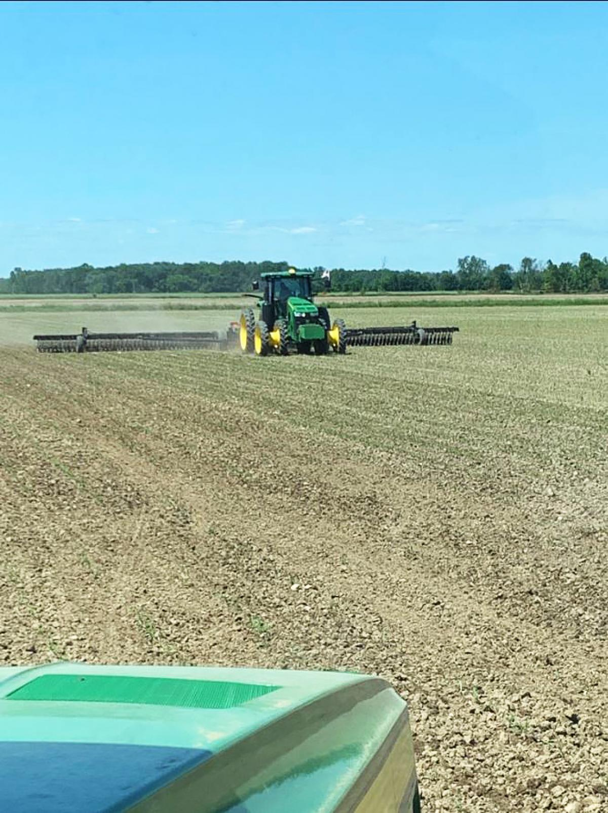 3600 Pull-Type Rotary Hoe in field