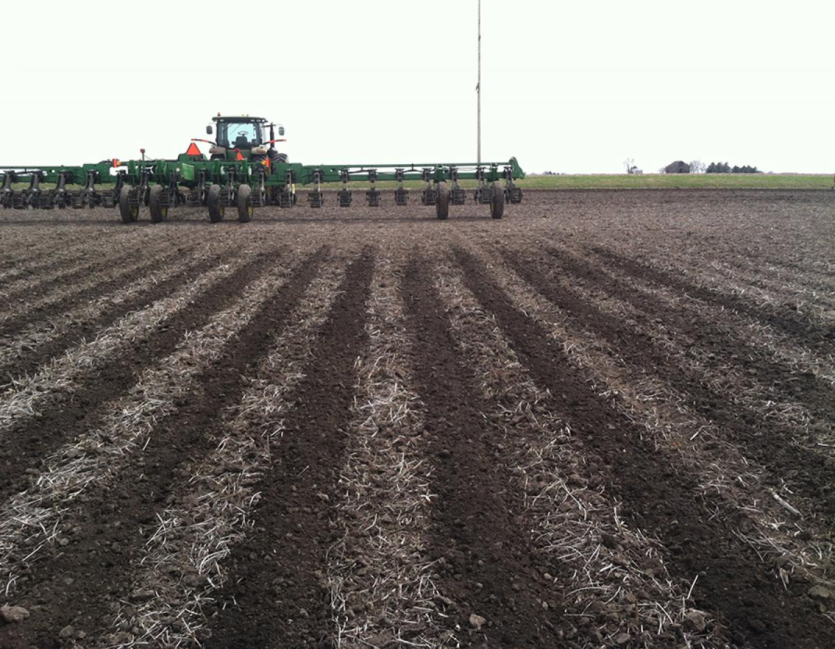 Tilled strips in the field with Strip Freshener in background